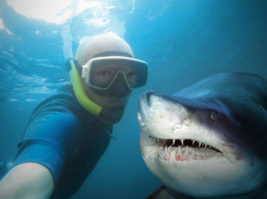 Underwater selfie with friend. Scuba diver and shark in deep sea